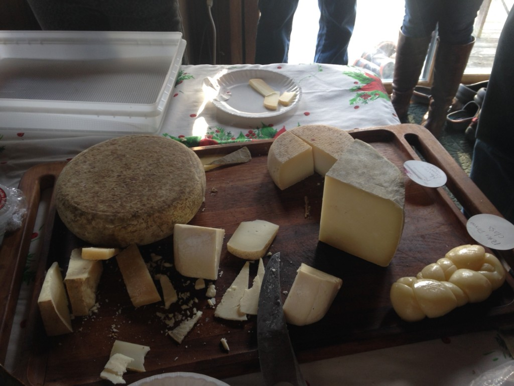 We tasted Romano and Romano type cheeses made with goat, sheep, and cow milk, including a PDO Romano