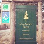 Lone Spruce Farm
